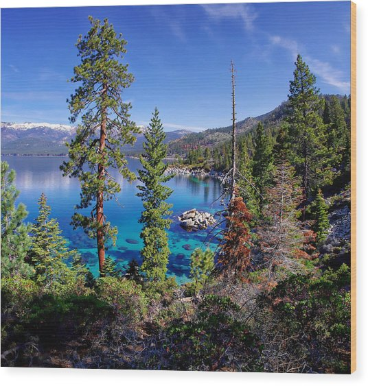Lake Tahoe Eastern Shore Wood Print