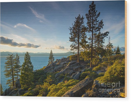 Lake Tahoe From Chimney Beach Trail Wood Print