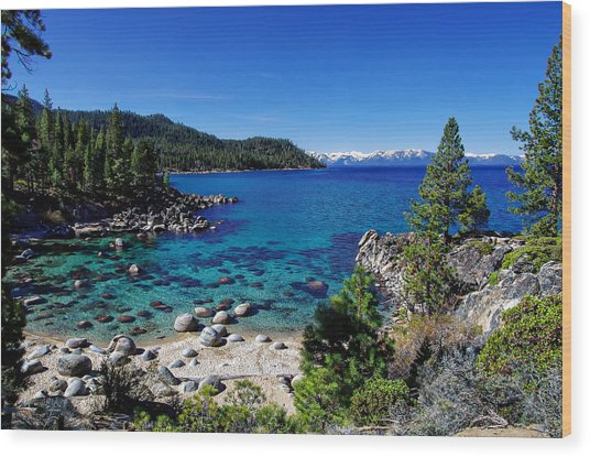 Lake Tahoe Springscape Wood Print