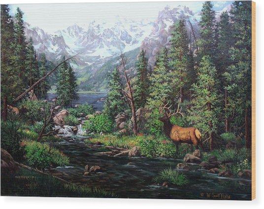 Lake Verna Elk Wood Print by W  Scott Fenton