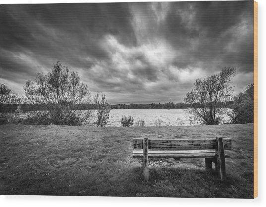 Lake View. Wood Print