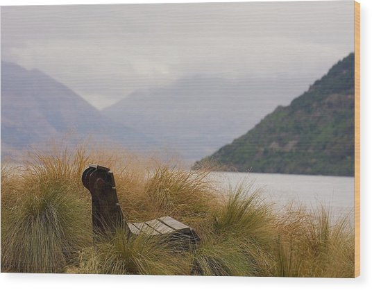 Lake Wakatipu Bench Wood Print