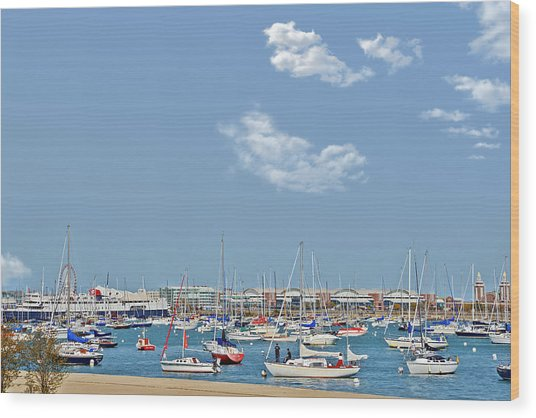 Lakefront Chicago Wood Print
