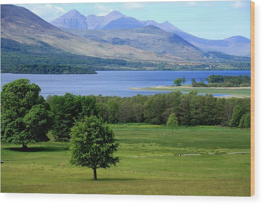 Lakes Of Killarney - Killarney National Park - Ireland Wood Print