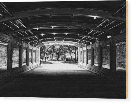 Lakeshore Tunnel Wood Print