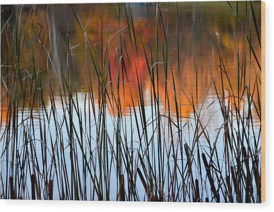 Lakeside Tales Wood Print