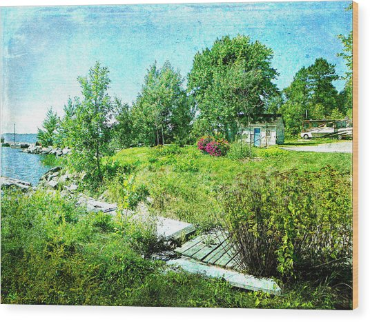 Lakeside Charm Wood Print by Dianne  Lacourciere