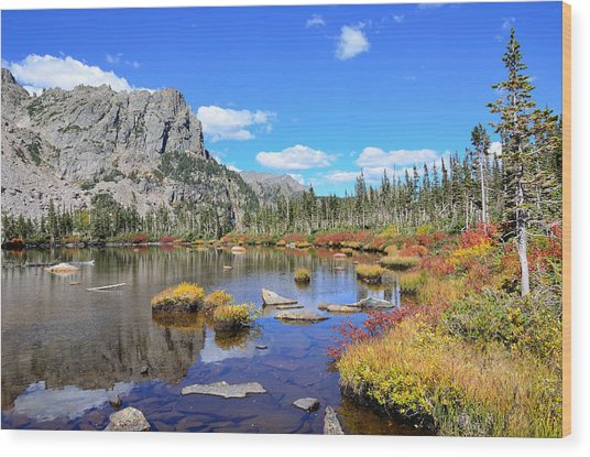 Lakeside Color Wood Print