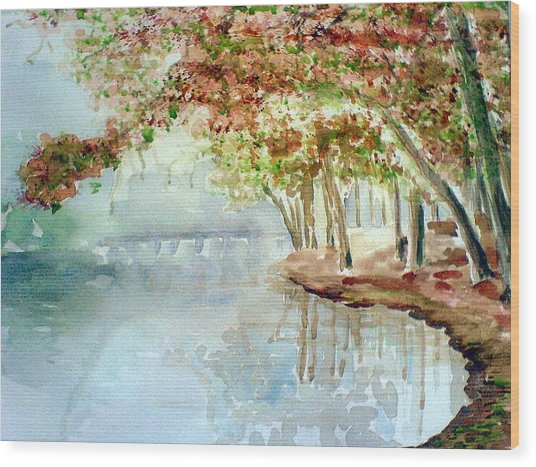 Lakeside In The Carolinas Wood Print