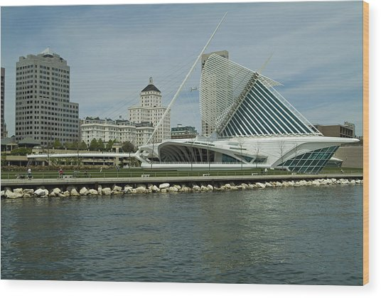 Lakeview Of Milwaukee Art Museum Wood Print by Devinder Sangha
