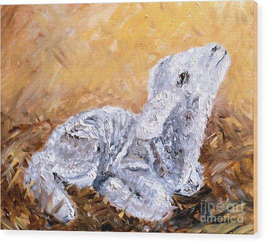 Lamb  Wood Print by Amanda Dinan