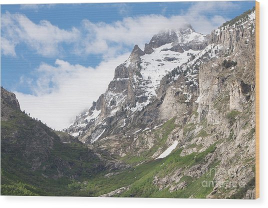 Lamoille Canyon Wood Print