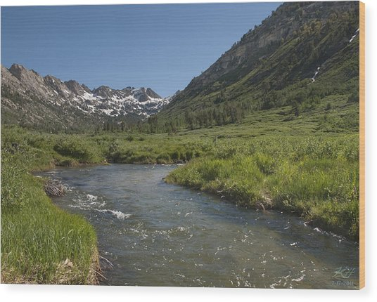 Lamoille Creek Wood Print