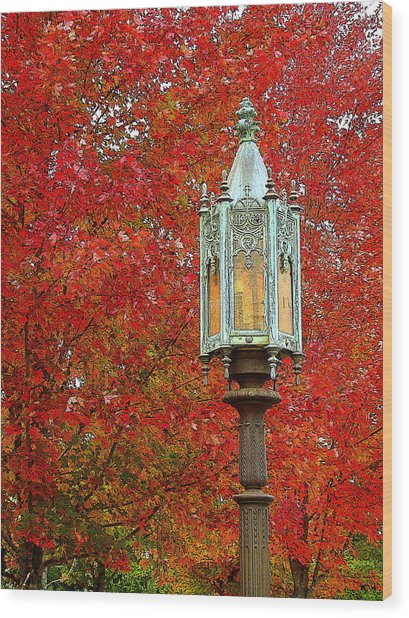 Lamp Post In Fall Wood Print