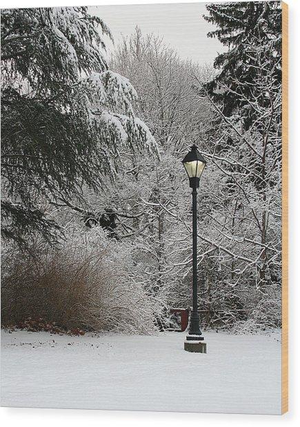 Lamp Post In Winter Wood Print