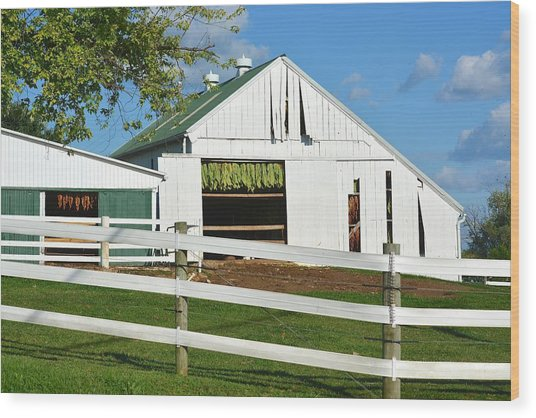 Lancaster County Tobacco Barn Wood Print
