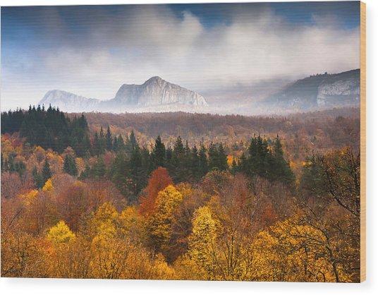 Land Of Illusion Wood Print