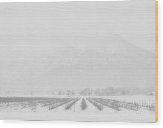 Land Of Snow Wood Print