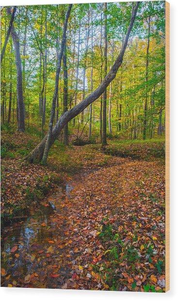 Land Of The Fairies Wood Print