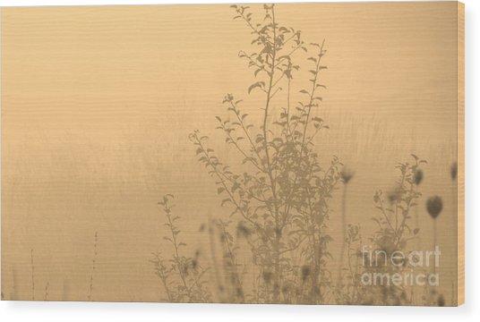 Land Of Wildness Wood Print