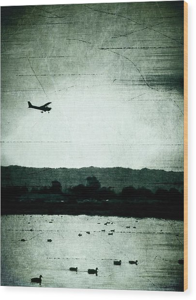 Landing At Sunset Wood Print