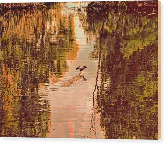 Landing Duck Absrtact Wood Print