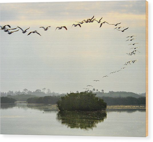 Landing Pattern Wood Print