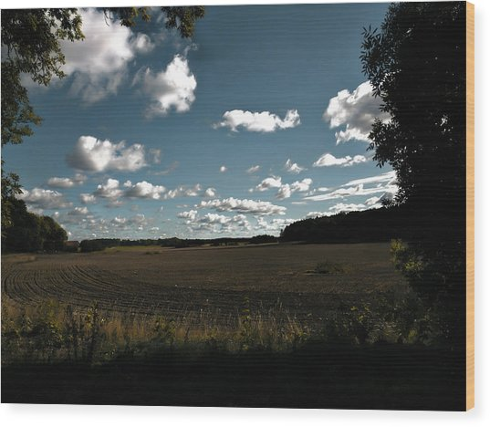 Wood Print featuring the photograph landscape Enkoepingsnaes by Leif Sohlman