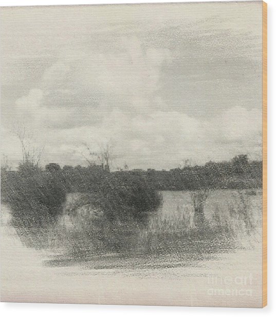 Landscape In Patches Wood Print