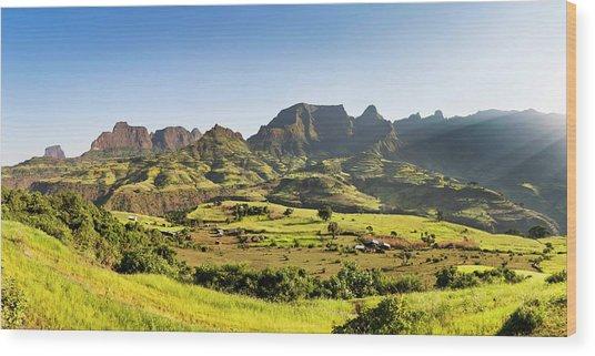 Landscape Near The Escarpment Wood Print by Martin Zwick