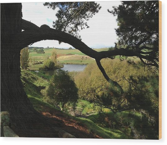 Landscape With Water Wood Print by Ron Torborg