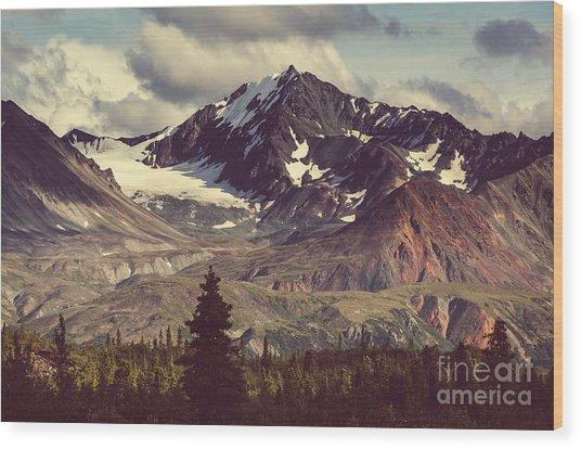 Landscapes On Denali Highway.alaska Wood Print