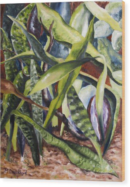 Languid Cactii Wood Print