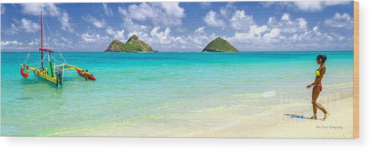 Lanikai Beach Paradise 3 To 1 Aspect Ratio Wood Print