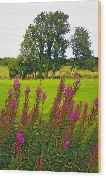 Lanna Fireweeds County Clare Ireland Wood Print