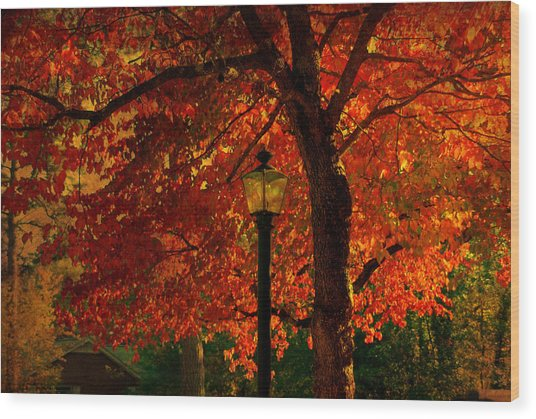 Lantern In Autumn Wood Print