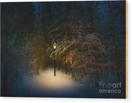 Wood Print featuring the photograph Lantern In The Wood by Michael Arend