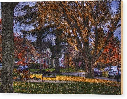 Larchmont-radcliffe Park Wood Print