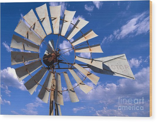 Large Windmill Wood Print