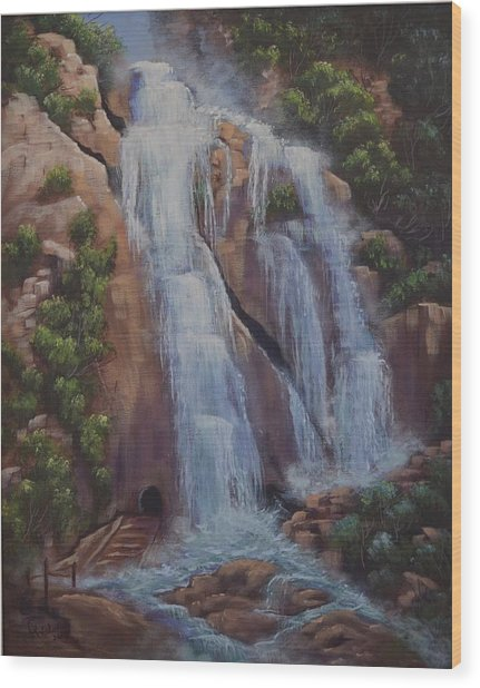 Las Brisas Falls Huatuco Mexico Wood Print