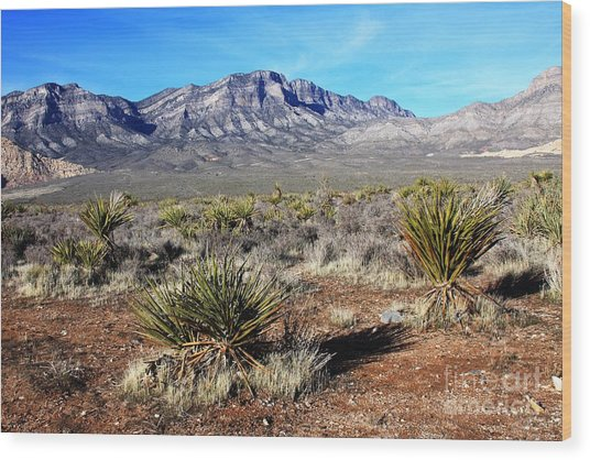Las Vegas Desert Wood Print by Kathlene Pizzoferrato