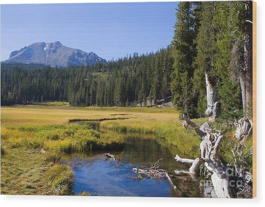 Lassen Mountain Stream Wood Print