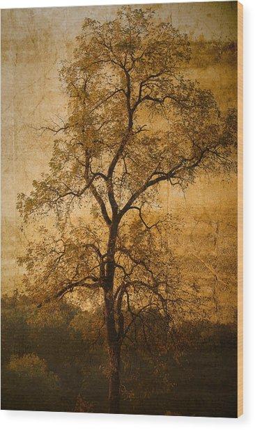 Last Fall Wood Print