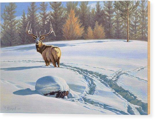 Last Look  -elk Wood Print