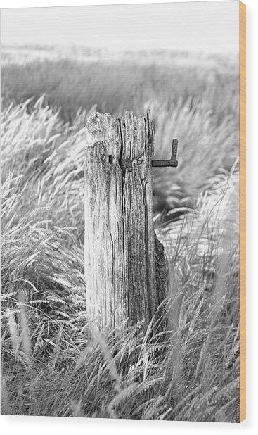 Last Post Wood Print