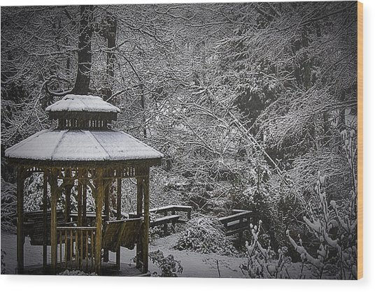 Last Snow Wood Print by Barry Jones