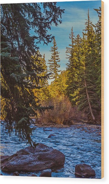 Late Afternoon Along The South Platte Wood Print by Mike Schaffner