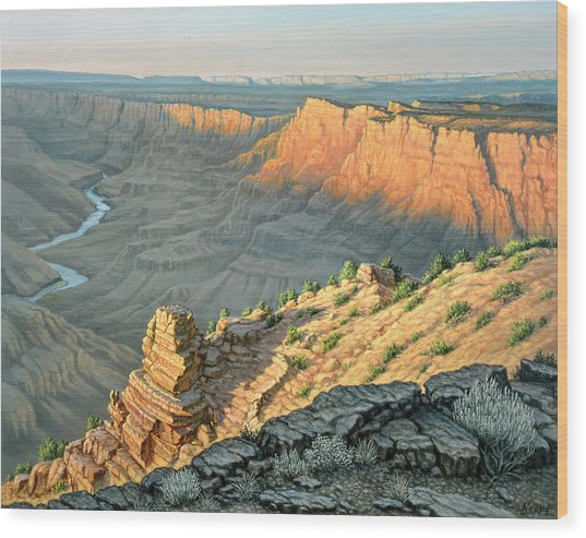 Late Afternoon-desert View Wood Print
