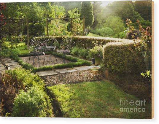 Late Afternoon Garden Wood Print