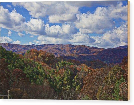 Late Autumn Beauty Wood Print